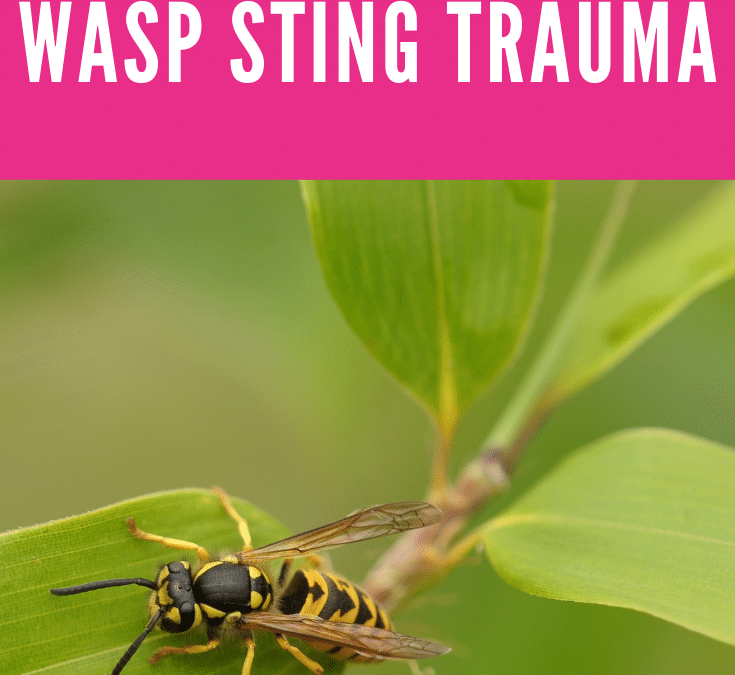 Eft tapping with Mother on Child with Wasp Sting Trauma